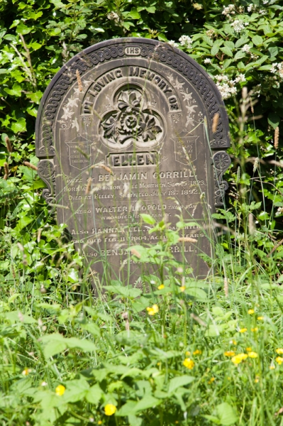 general_cemetery-9258
