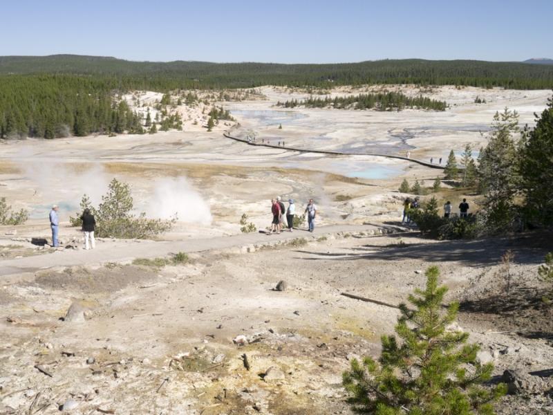 Yellowstone_Norris Geyser Basin-1030553